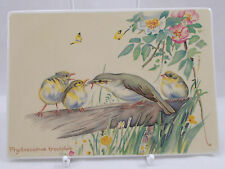 Villeroy & and Boch VILBOCARD A53 BIRDS Edith Holden UNUSED BL073