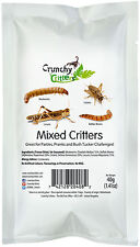 Edible Insects Edible Bugs Bush Tucker Mixed Critters 40g Crunchy Critters