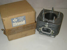 CCW 225 CYLINDER NOS IN THE BOX READY TO GO VINTAGE SNOWMOBILE AUTO SKI OTHERS