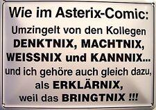 Asterix - Comic Funschild Fun Schild Blechpostkarte Blechschild 10,5 x 14,8 cm