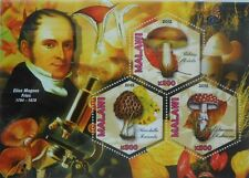Mushrooms & Mycologists (1) E M Fries Malawi 2012 s/s hexagon stamps MNH #VG680