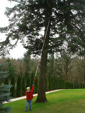 Professional Pole Saw lopper, long reach, telescopic, branch, forestry, wood, HD