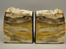 Petrified Wood Bookends Sequoia 3.75 inch Polished Stone Fossil Washington #7