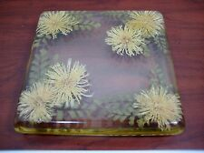 Vintage Lucite Acrylic Footed Trivet Mum Flowers Fern Resin Rare 8 x 8 Square