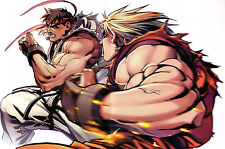 Ryu and Ken - Street Fighter - High Quality Poster 22in x 34in (Fast Shipping)