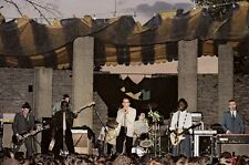 """12""""*8"""" concert photo of The Specials playing at Birmingham in 1979"""