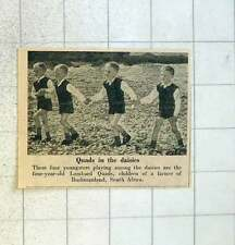 1955 4-year-old Lombard Quads Children Of Farmer Bushmanland South Africa