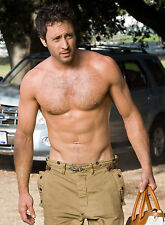 PHOTO LE PLAN B - ALEX O'LOUGHLIN 11X15 CM  # 7