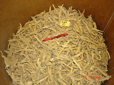 10 lbs. American Ginseng Root Grown in Marathon County, Wisconsin - Lot C