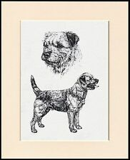 BORDER TERRIER LOVELY DOG SKETCH PRINT MOUNTED READY TO FRAME