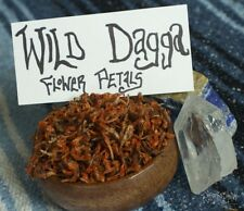 1 oz Wild Dagga Pure Flower Petals LION'S TAIL *Wild Harvested*