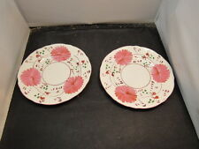 Antique  Plates Allertons  England