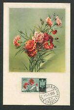 San MARINO MK 1955 Flora GAROFANO CARNATION Maximum cartolina MAXIMUM CARD MC cm d8017