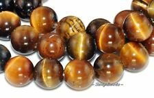 CHATOYANCE TIGER EYE GEMSTONE ROUND LOOSE BEADS 7.8""