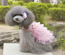 Spring Soft Cotton Dog Dress w Lace Tiers Tutu Flower For Speical Occasions S-XL