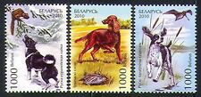 Belarús 2010 spaniel/irish setter/hunting dogs/nature/animals 3v Set (n32052)