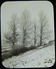 Glass Magic Lantern Slide A FROSTED FIELD C1890 PHOTO SNOW WINTER