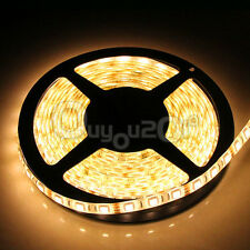 5M 3528/5050/5630 SMD LED RGB Flexible Strip Light Lamp+Remote Waterproof DC 12V