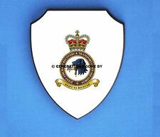 JOINT AIRCRAFT RECOVERY & TRANSPORTATION SQN (JART) WALL SHIELD (FULL COLOUR)