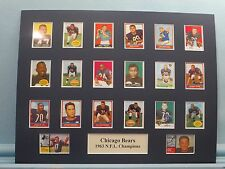 Chicago Bears led by George Halas & Mike Ditka are the 1963 NFL Champions