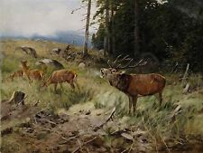PAINTING LANDSCAPE ANIMALS DRATHMANN STAG DEER NEAR FOREST PRINT POSTER LF531