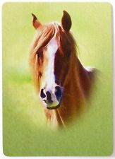 SWAP CARD. HORSE PORTRAIT. CHESTNUT WITH WHITE BLAZE. RARE. MINT COND. WIDE