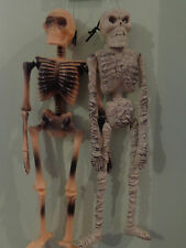 Halloween Party/Prop Spooky Mummy and Skeleton Hanging Decoration/window/wall