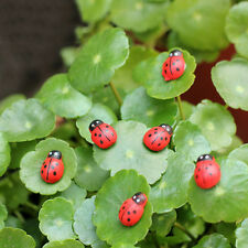 Hot sale Mini Ladybug Decoration Lovely Beatles Micro Landscape Gardening 10 pcs