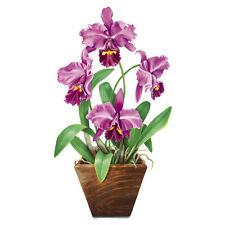 """Tatouage Cattleya Orchid Rub on Transfer by Yovan--22""""h x 12""""w"""