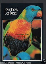 Animals Postcard - Birds - Rainbow Lorikeet  RR1342