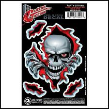 D'Addario Planet Waves Guitar Tattoo Decal Peek a Boo Skull GT77002 New