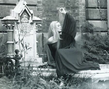 VERONICA CARLSON UNSIGNED PHOTO - 4061 - FRANKENSTEIN & DRACULA