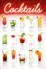 DRINKING POSTER Cocktails English