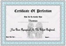 Certificate of Perfection boyfriend, girlfriend, lover etc etc A4 ( Novelty )