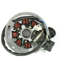 Ignition Alternator 5-pin for China 2T 50ccm Roller with 1PE40QMB Motor