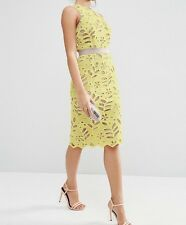 Premium Lace Midi Pencil Dress With Contrast Seams Sz- 8 RRP £75.00 (G6)