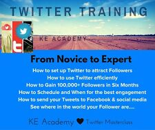E-course Online Learning: Get 100,000+ Follower On Twitter in 6 Months