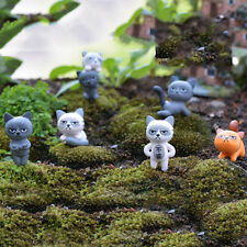 Unhappy Angry Cat Figures Decor Miniature Figurine Mini Fairy Garden ResinCraftW