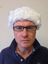 Judge Wig Barrister Court Gentleman Downton Abbey Law Fancy Dress Party Hair