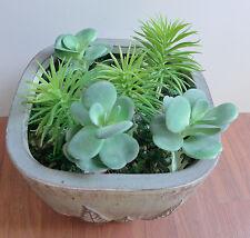 6 Plastic Artificial Grass Mini Pine Trees unkillable Succulents Plants