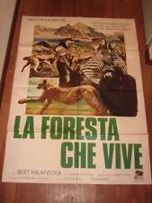 LA FORESTA CHE VIVE DE LAURENTIS   MANIFESTO   100X140 CM