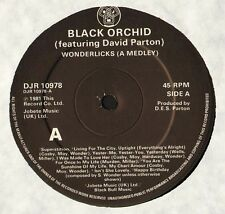 "BLACK ORCHID/DAVID PARTON wonderlicks DJR 10978 uk djm 1981 12"" CS EX/EX"