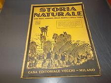 FASCICOLO STORIA NATURALE N.12.VITA ANIMALI,PIANTE,TERRA.VECCHI EDITORIALE.