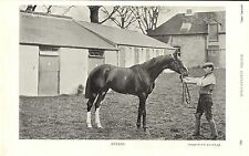1896 racing illustrated print of euclid & stable boy