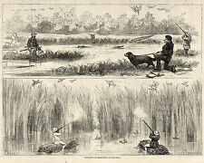 WILD DUCK SHOOTING IN PANAMA ALLIGATOR SWAMPS, Waterfowl Hunting Dog, 1875 Print