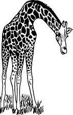 Giraffe in grass wall vinyl decal