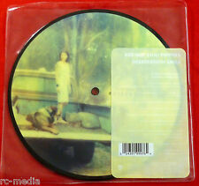 """RED HOT CHILI PEPPERS -Desecration Smile- Rare UK 7"""" Picture Disc"""