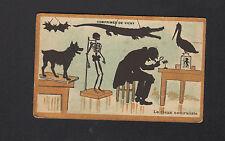 IMAGE CHROMO Pharmacie / Comprimés de VICHY ,VIEUX NATURALISTE Squelette Animaux