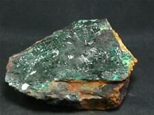 """BEAUTIFUL ATACAMITE CLUSTER FROM CHILE - 4.1"""""""