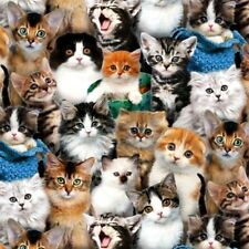 Cat Breeds Cute Kittens Cats Kitten Faces Cotton Fabric Fat Quarter